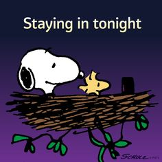 Staying in Tonight - Snoopy and Woodstock Sitting Together in Woodstock's Nest