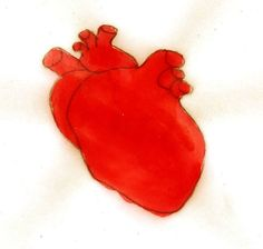Red heart , pencil and ink drawing