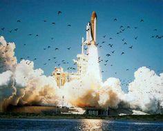 #Rocket #Sky #Birds #Photo #Nasa
