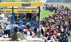 Shock photos show petrol station now a REFUGEE CAMP - proof migrant crisis out of control  THESE outrageous photos show how migrants have taken over a petrol station on the Greek-Macedonian border.
