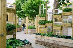 Wayward : Queen's Walk Window Gardens Urban Agriculture, Urban Farming, Reclaimed Windows, Garage Renovation, Garden Windows, Edible Garden, Garden Spaces, Urban Landscape, Winter Garden