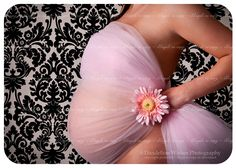 pregnancy pictures | Gorgeous pregnancy pictures in the northern virginia washington dc ...