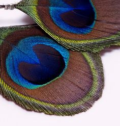 Trimmed Peacock Feather Earrings by taviasanzaothershop on Etsy