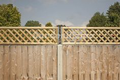 privacy fence trellis - Google Search