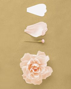 How to make a peony out of crepe paper