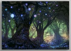 """Beautiful """"Forest Wisp"""" metal poster created by Ferdinand Ladera. Mystical Forest, Fantasy Forest, Magic Forest, Fantasy Castle, Forest Art, Fantasy World, Fantasy Art, Dark Forest, Fantasy Posters"""