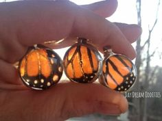 Monarch Butterfly, Butterfly Wings, Wing Necklace, Beautiful Butterflies, Turtle, Insects, Wildlife, Amazing Things, Nature
