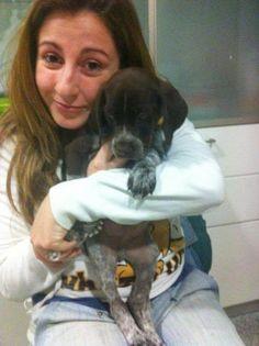 Mi perro tiene un Blog ! : La familia crece