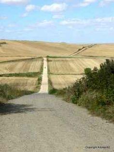 The road ahead: the Camino de Santiago