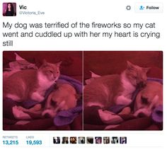 This caring best friend: | 32 Of The Most Wholesome Things That Have Ever Happened