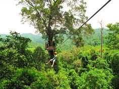 Zip linning in Puerto Rico! Puerto Rico is one of the easiest places to get to from the United States. Click through to see what you can't miss while visiting the island!