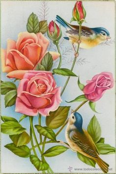 Most up-to-date Pictures Fabric painting birds Ideas , Art Vintage, Vintage Birds, Vintage Flowers, Vintage Images, Art Floral, Pretty Birds, Beautiful Birds, China Painting, Bird Pictures