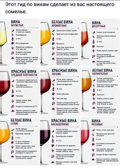 Wine Deals Near Me Product Wine Recipes, Cooking Recipes, Healthy Recipes, Good Food, Yummy Food, Wine Guide, Food Science, Wine Cheese, In Vino Veritas
