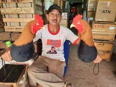 Boneka ini adalah sarana untuk melatih ayam kesayangan anda. Bahan empuk dan tentunya awet