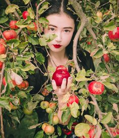 seewhatinspires: Forbidden Fruit Click on the image for the taobao listing