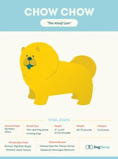 Did you know: Chow Chows and Shar-Peis are the only two dog breeds with blue tongues?