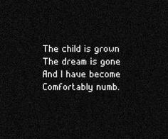 Pink Floyd's Comfortably Numb lyrics are so true! The child is grown... The dream is gone... And I have become comfortably numb!!!