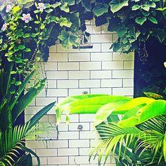 Fresssh Jungle Shower#Canggu #bali  Tropical Outdoor Shower