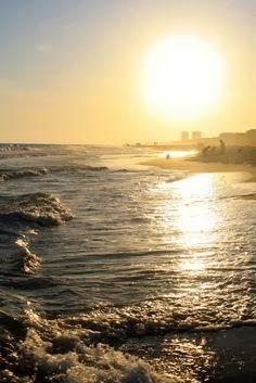 Raised Southern- Gulf Shores, AL