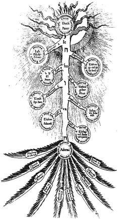 Ed's portal of truth