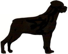 Rottweiler -- Backer Board for Private Property / Beware of Dog Norwich Terrier, Best Dog Photos, Funny Dog Photos, Rottweiler Breeders, Dog Silhouette, Dog Breeds, Dog Lovers, Rottweilers, Dog Tattoos