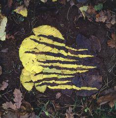 Andy Goldsworthy Yellow and Dark Elm Leafwork