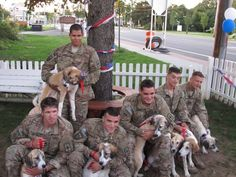 Afghan vets reunited in NY with 8 battlefield dogs - PORT JEFFERSON STATION, N.Y. (AP) — Army reunions have been held as long as soldiers have been going off to war, yet a reunion this week was perhaps like no other in history.