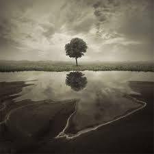 Leszek Bujnowski Photography