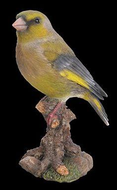 Vert Finch oiseau sur une souche Vivid Arts https://www.amazon.fr/dp/B01B7YGF4M/ref=cm_sw_r_pi_dp_cSxzxb8BNY5MB
