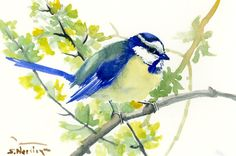 Eurasian Blue Tit one of a kind original watercolor painting, bird art,geen blue small original painting gift bird lover art by ORIGINALONLY on Etsy