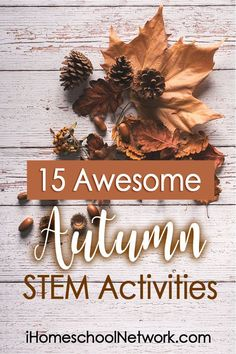 15 Awesome Autumn STEM Activities - iHomeschool Network - - Now that you're settling into a normal, daily homeschool routine, it's the perfect time to add in something new, like this list of Autumn STEM activities. Autumn Activities For Kids, Fall Preschool, Halloween Activities, Preschool Ideas, Stem Learning, Learning Activities, Kids Learning, Teaching Ideas, Kindergarten Stem