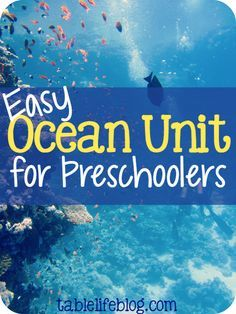 Easy Preschool Ocean Unit is part of Science Preschool Unit Studies - Is your little one fascinated by the sea and its creatures I can help! I've recently put together an easy preschool ocean unit study for our homeschool Preschool Curriculum, Preschool Science, Preschool Lessons, Homeschooling, Preschool Learning, Preschool Themes By Month, Preschool Activities, April Preschool, Preschool Plans