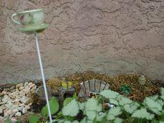 Tea cup & patio furniture Tea Cups, Fairy, Patio, Garden, Plants, Furniture, Garten, Terrace, Lawn And Garden
