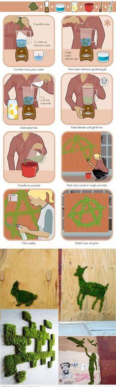 dessin vegetal 3 poignées de mousse 700 ml d'eau tiede 2cas de gel de rétention d'eau ( perle cristal chez le fleuriste) 120 ml de babeurre mixer 2 a 5 min mettre en pot faire le dessin sur le mur 4 jour après c est pousser