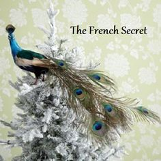 Hey, I found this really awesome Etsy listing at https://www.etsy.com/listing/278259748/rustic-christmas-peacock-tree-topper