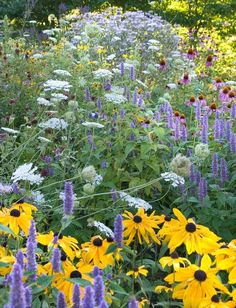 To decorate your garden as Mother Nature would, scatter wildflowers native to your area. Easy to plant and grow, they'll lavish the ground with color in practically no time.