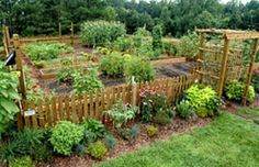 Stunning Vegetable Garden Fence Ideas 1