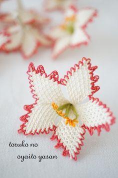 イーネオヤのお花