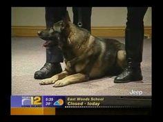 Channel 12 News Heroin in Long Island