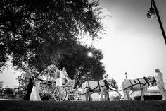 Cinderella's Coach at a Disney's Fairy Tale Wedding. Photo: Stephanie at Disney Fine Art Photography