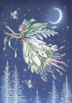 Christmas fairies Reuben McHugh