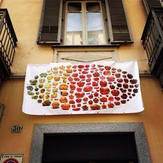 Supernatural tomatoes - uli westphal @ NOPX