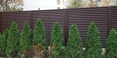 Lucrari garduri si porti metalice MODERNE SI REZISTENTE Outdoor Structures, Modern, Plants, Trendy Tree, Plant, Planets