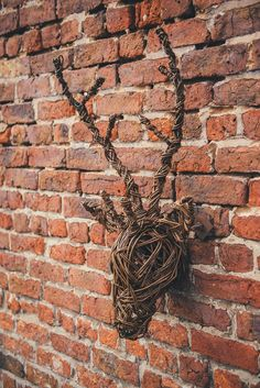 Willow stag head decoration #fall #home
