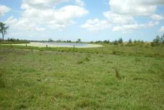 Finding acreage or farms for sale in CORAKI, NSW has never been easier