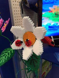 Flower - HAMA Stand (Nüremberg Toy Fair 2014)