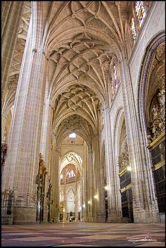 Segovia Cathedral   por Carlos Solana Contreras / https://www.flickr.com/photos/lasombraenlapared/6465466939/in/album-72157628303897597/lightbox/