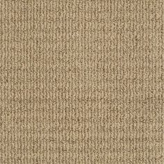 STAINMASTER TruSoft Uneqivocal Maxi Tan Berber Indoor Carpet