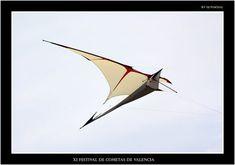 Furax by Ramlal Tiens Kite Building, Kite Store, Kites Craft, Kite Designs, Kite Making, Paper Plane, Unusual Things, Surf, Diy And Crafts