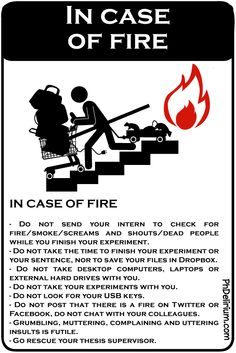 PhD cartoon from Phdelirium/ In case of fire !